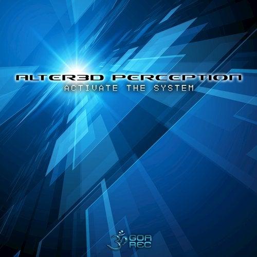 Activate The System               Original Mix