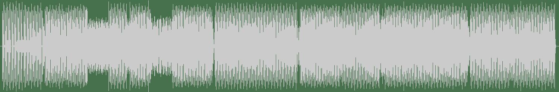 Farley Jackmaster Funk - Jack the Bass (Paul Anthony Remix) [Phuture Trax] Waveform