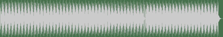 Shania - Southpole (Original) [Muenchen] Waveform