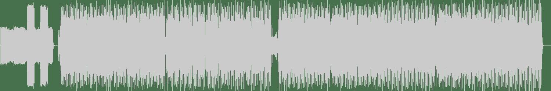 Aeroloid - Together (Original Mix) [Plasmapool] Waveform
