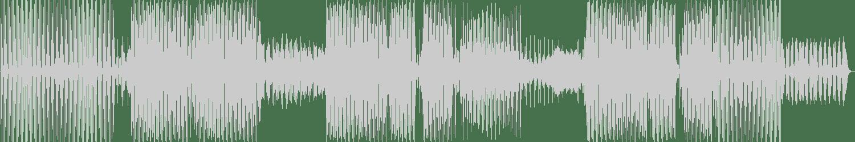 Chris Hartwig - The Nice Guy (Original Mix) [Play My Track Recordings] Waveform