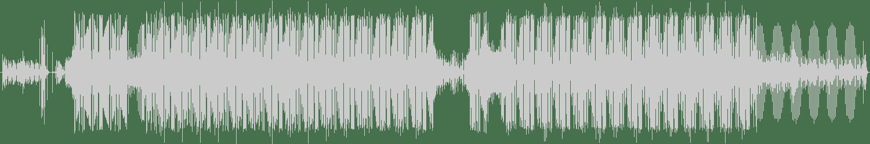 Bukkha - Armageddon (Original Mix) [Filthy Digital] Waveform