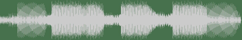 Michael Bibi - Magic Carpet (Huxley Remix) [Toolroom Longplayer] Waveform