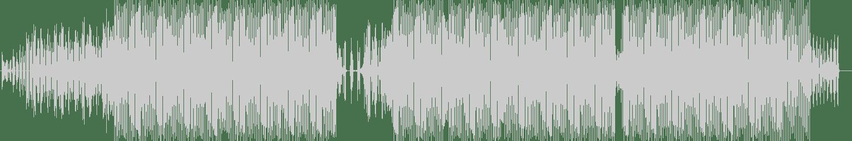 Alicia King, Sam Supplier - Fire (Original Mix) [DGTL Vision Records] Waveform