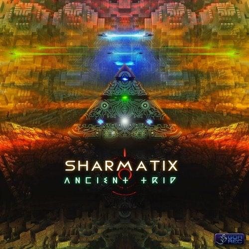 Ancient Trip               Original Mix