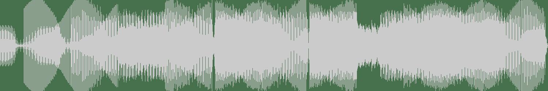 Bonnie Bailey - The Little Things (Bassmonkeys Club Mix) [Fierce Angel] Waveform