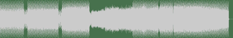 Will Fever - Chains (Original Mix) [Drum Tunnel Records] Waveform