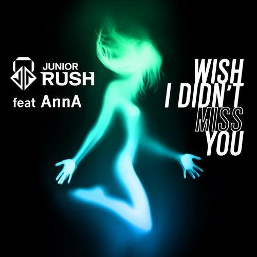Wish I Didn't Miss You (feat. AnnA)