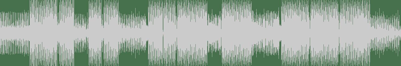 DJ Raid, DJ Fronter - The Sun (Original Mix) [Form] Waveform