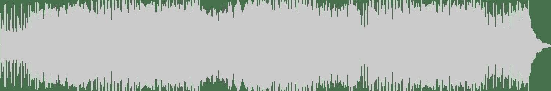 Mauro Picotto - Iguana (Organ Donors Subground Remix) [Total Music] Waveform