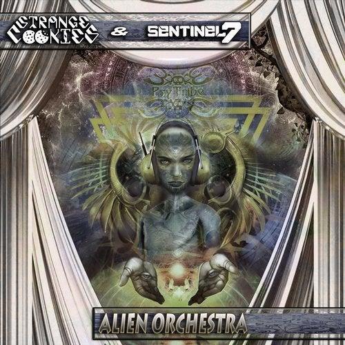 Alien Orchestra               Original Mix