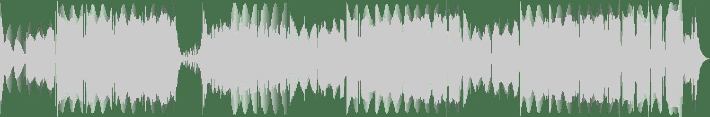 Allison, Darren G, Bridson - Voodoo (Tonkas VIP Powerstomp Remix) [White Noize Hardcore] Waveform