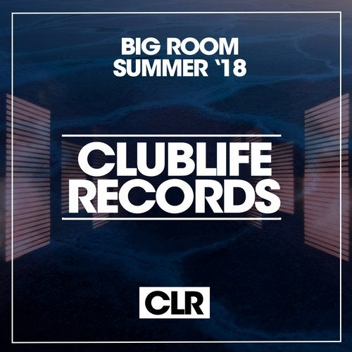 Big Room Summer '18