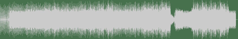 Miss Kittin - Grace (Original Mix) [Nobody's Bizzness] Waveform