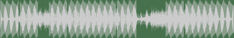 Laera - My Sex Machine Is Dead (Original Mix) [Laera Tunes] Waveform