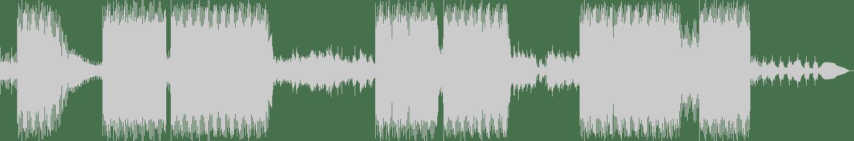 Kamil Van Derson, Marco Ginelli - Formaldehyde (Original Mix) [Hardwandler Records] Waveform