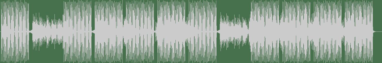 Cybernetic Rhythms - Fine Education (Galaxy Mix) [Avocado Mango Soup] Waveform