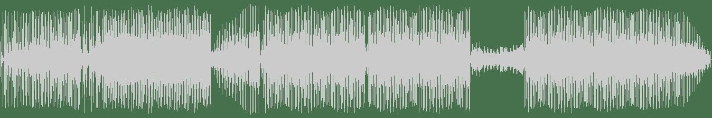 Danny Roberts - Tosnia (Curd Remix) [Tonarm Records] Waveform