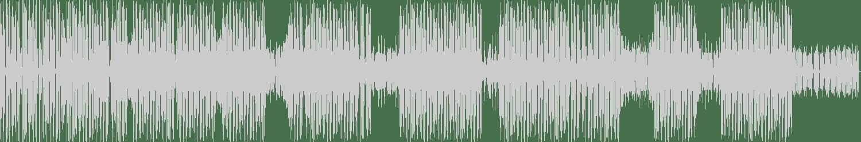 Erhalder - Delusion (Housemeister Remix) [AEROBIK] Waveform