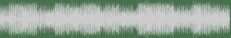 BONDI - Do It Right (Original Mix) [Tenor Recordings] Waveform