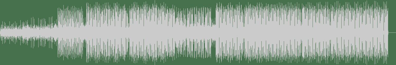 Following Light - Inane (Original Mix) [Lincor] Waveform