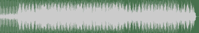 The Mord - The Color Nation (Original Mix) [Gysnoize Recordings] Waveform