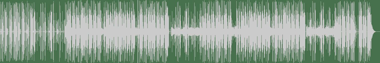Strict Face - Viper Striking (Original Mix) [NLV Records] Waveform