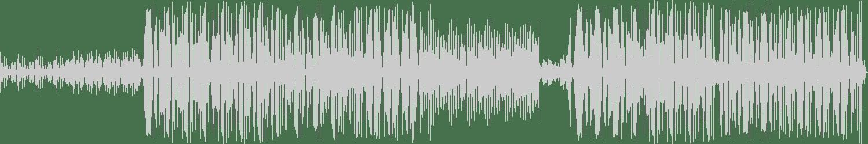 My Nu Leng - The Grid (Original Mix) [877 Records] Waveform