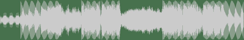 Danny Howard, Eli & Fur - If You Were feat. Eli & Fur (Extended Mix) [Nothing Else Matters] Waveform