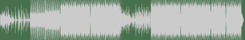 Nesbit - Survival Trip (Original Mix) [Irish Underground Sounds] Waveform