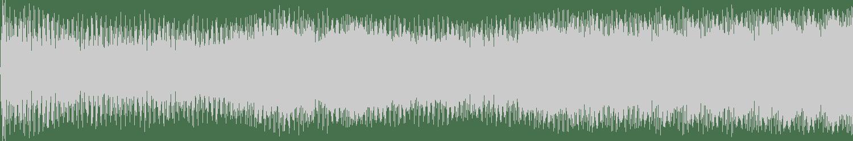 Relic Radiation - Untitled (Outro) (Original Mix) [La Notte di Architetto] Waveform