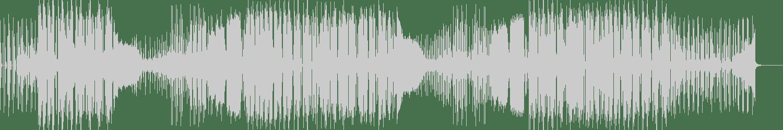 Roos, Alter - Pump In Party (Original Mix) [Spyduge Record] Waveform