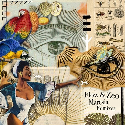 Maresia (Sonic Future Remix) by Flow & Zeo on Beatport
