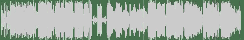 Drokz - I Don't Stress The Skill (Original Mix) [Derailed Traxx (Be Yourself Music)] Waveform