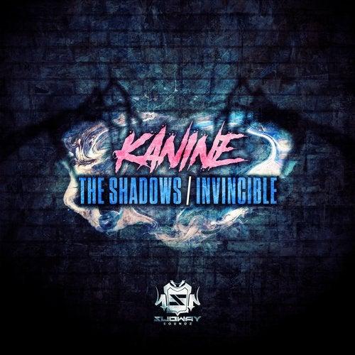 The Shadows / Invincible