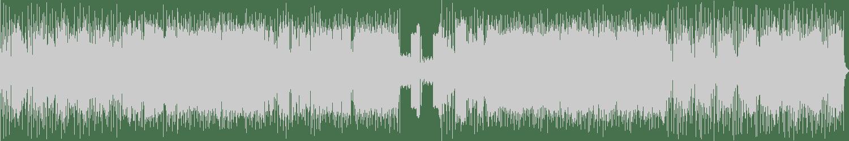 Javi R - Space Of Shit (Original Mix) [KeyBreak] Waveform