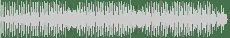 Benjamin Takats - Schisslaweng 05 (Original Mix) [Karma Of Life] Waveform