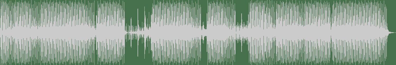 Rodrigo Sonari - I Fantasmi (Original Mix) [Progrezo Records] Waveform