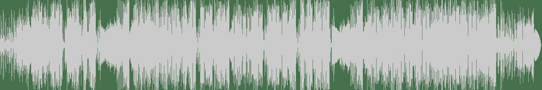 Serge Ray - Tex Mex (Original Mix) [Black Delta Records] Waveform