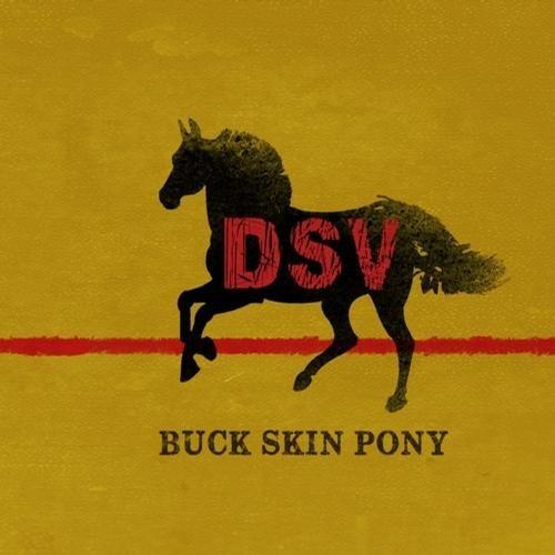 Buck Skin Pony