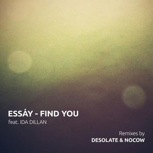 find you feat ida dillan original mix by essay on beatport embed artists essay