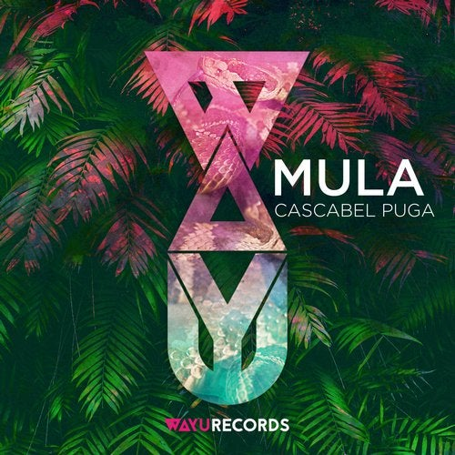 WAYU017 - Mula - Cascabel Puga