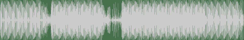 Mason Collective - Patti's Groove (Original Mix) [Blackflag Recordings] Waveform
