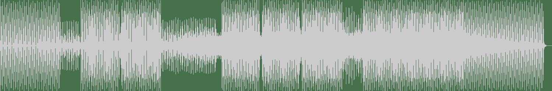 Cerillo - All Dem Hoes (Leandro Di Remix) [Tenor Recordings] Waveform