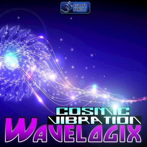 Cosmic Vibration               Original Mix