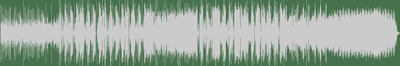 Doshy - Space Attack (Rudi Zygadlo Remix) [Robox Neotech] Waveform