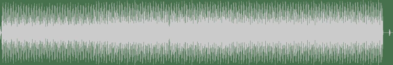 Pezzner, The Digital Kid versus The World - Shooting Star feat. Pezzner (Original Mix) [Classic Music Company] Waveform
