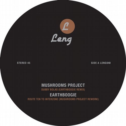 Mushrooms Project Vs Earthboogie Remix EP