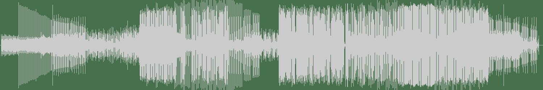 Shantisan - Meninas e Meninos (Instrumental Version) [Royal Soul Records] Waveform