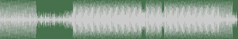 East End Dubs - Acid Roll (Original Mix) [Hottrax] Waveform